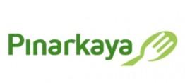 Pınarkaya